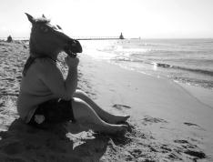 girl equines appreciate confidence.....